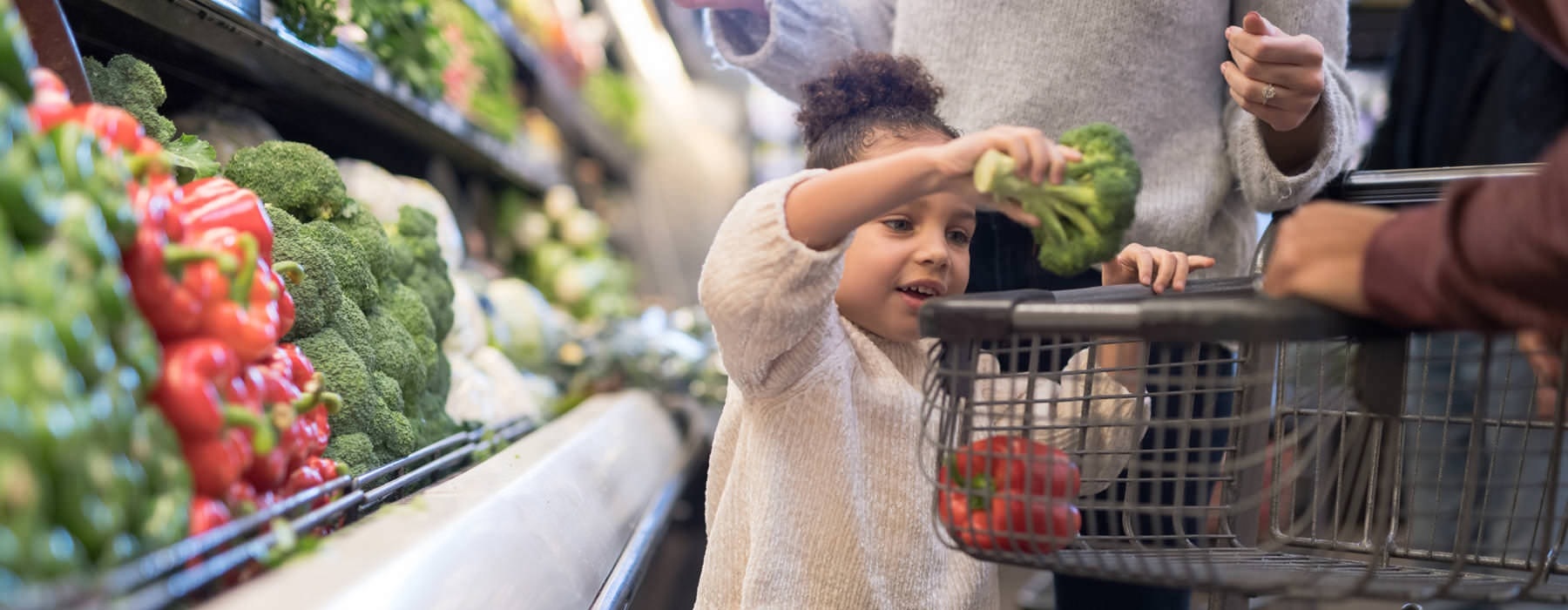 little girl puts a head of broccoli in her parents' shopping cart