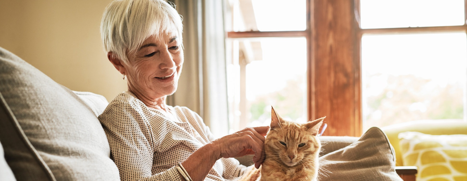 older lady sits on her couch and pets her cat